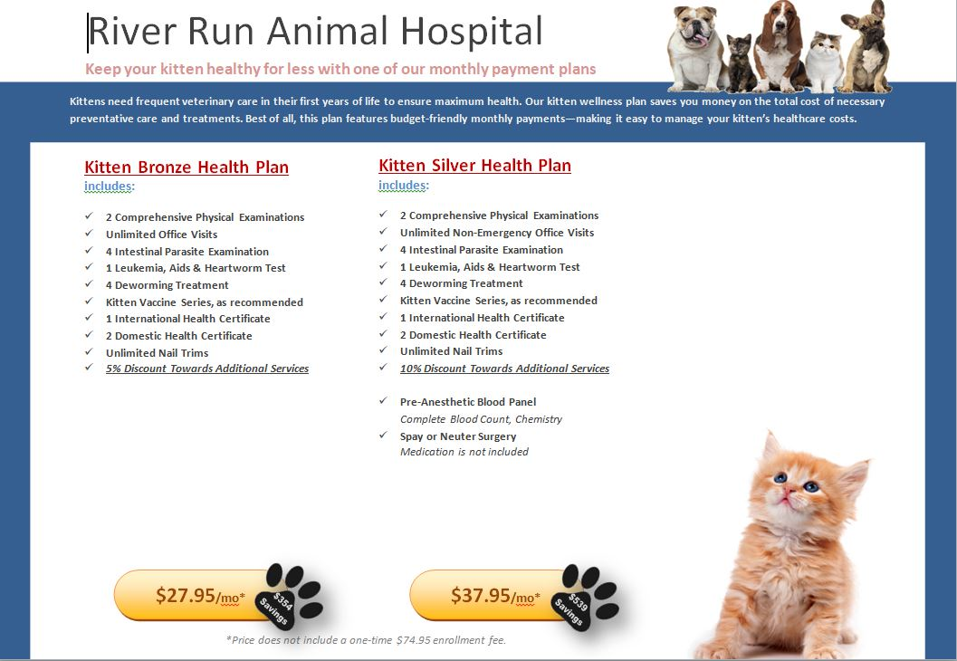 Kitten Prevention Health Plan